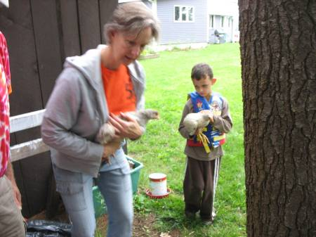 Keeping backyard chickens is a way for children to connect with nature, their food, the outdoors and animals. Keeping chickens teaches children the discipline of taking care of an animal.