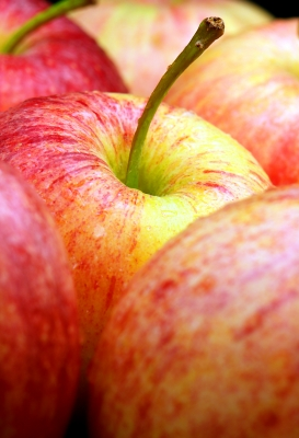 apples are sustainable and healthy unlike candy. Apples- encouragement, candy- praise. Disciplining children is TEACHing children. Discipline is the art of management.