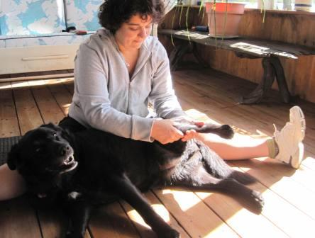 Even dogs like a good massage. Gonzo is not my best friend, but my children ADORED dogs and bonded with our three family dogs. Dogs go along with having a family. Children can do plenty of chores connected to dogs.